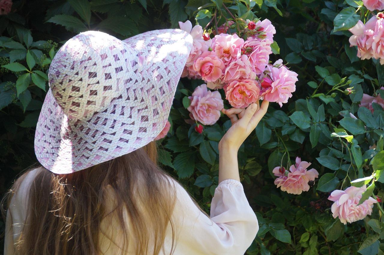Comment mettre en valeur les rosiers du jardin