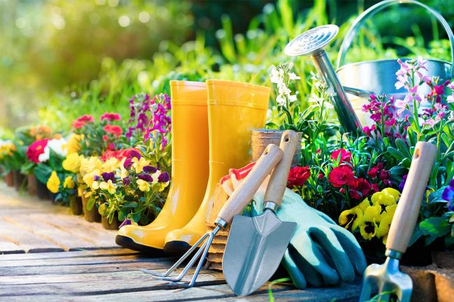 Quels sont les matériels adéquats pour s'occuper de son jardin?